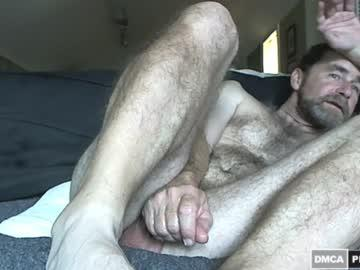curiouscock1 chaturbate